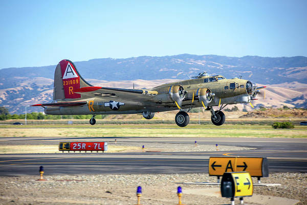 Photograph - B17 Flying Fortress Takeoff At Livermore by John King