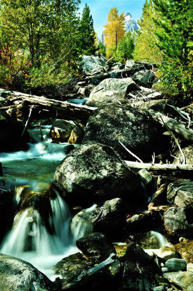 Art Print featuring the photograph Babbling Brook by Greg Norrell