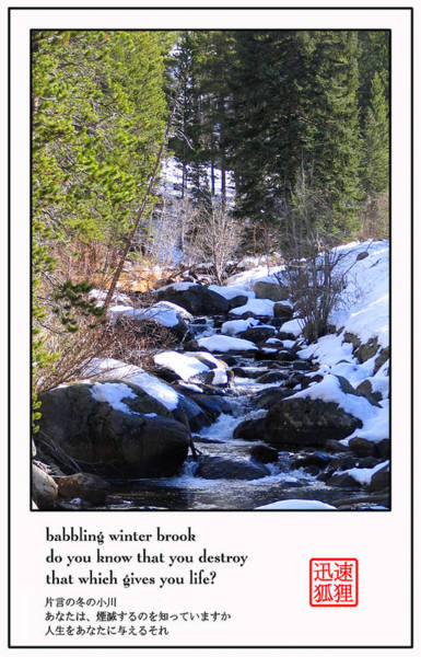 Photograph - Babbling Winter Brook by David Dunham