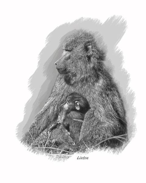 Digital Art - Baboon Mother And Young by Larry Linton