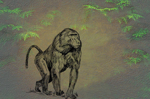 Mixed Media - Baboon by Movie Poster Prints