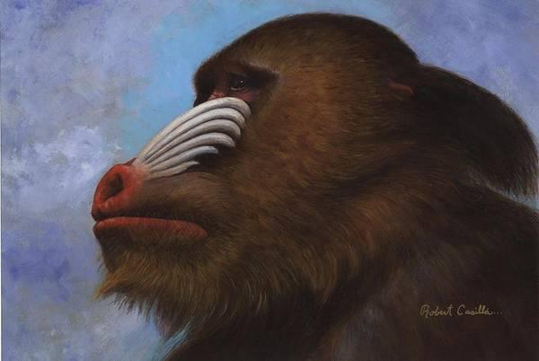 Wall Art - Painting - Baboon by Robert Casilla
