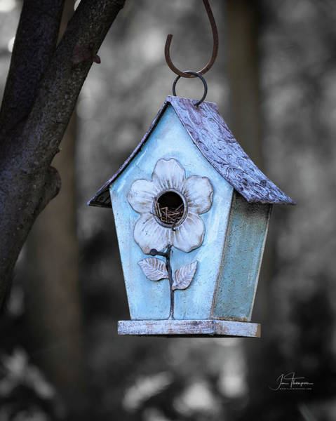 Photograph - Baby Blue Birdhouse by Jim Thompson