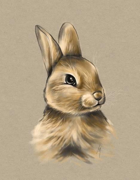 Wild Rabbit Painting - Baby Bunny by Veronica Minozzi
