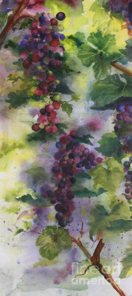 Wall Art - Painting - Baby Cabernet I  Triptych  by Maria Hunt