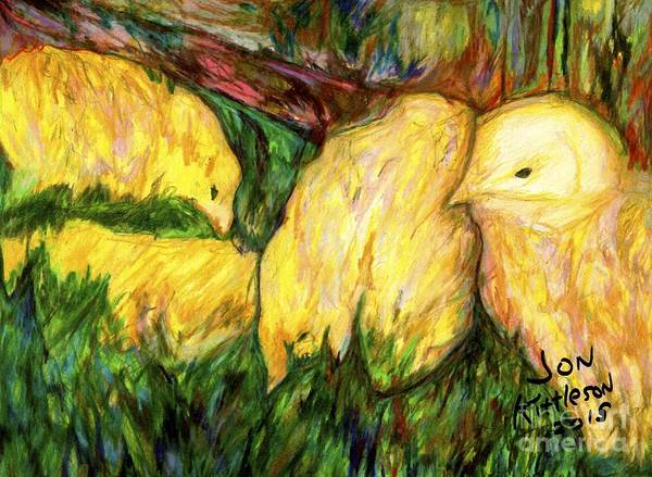 Drawing - Baby Chicks by Jon Kittleson