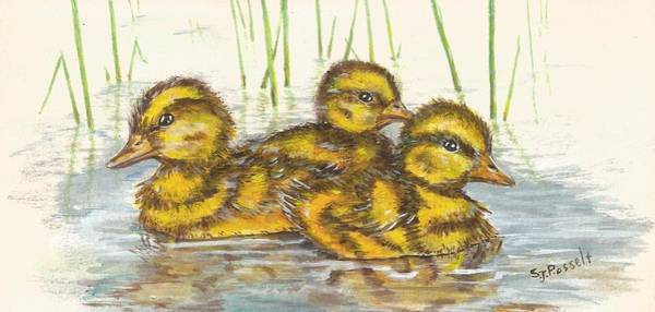 Painting - Baby Ducks For Ma by Sheri Jo Posselt