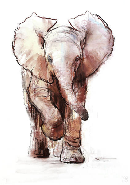 Wall Art - Painting - Baby Elephant Two Loisaba by Mark Adlington