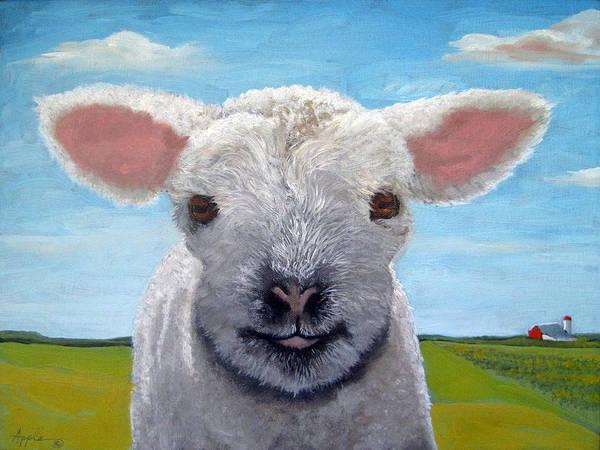 Wall Art - Painting - Baby Farm Lamb Sheep  by Linda Apple
