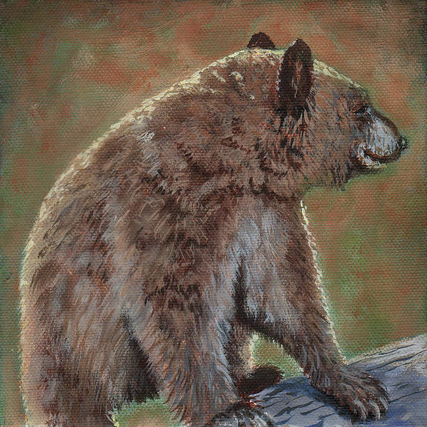 Wall Art - Painting - Baby Griz by Timithy L Gordon
