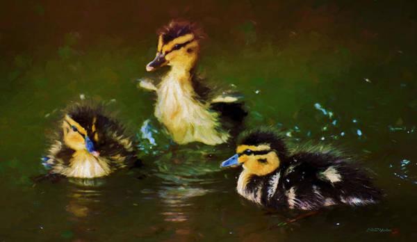 Painting - Baby Mlallard Ducklings - Painted by Ericamaxine Price