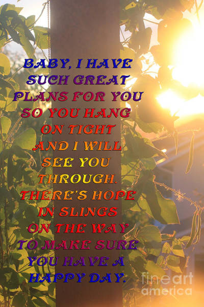 Photograph - Baby My Plans For You by Donna L Munro