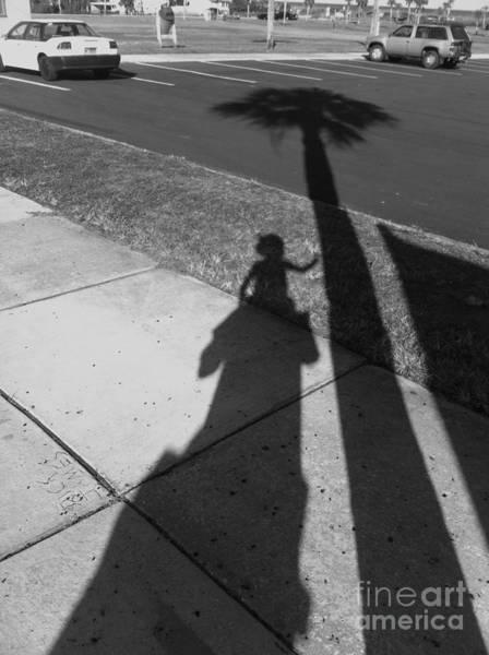Photograph - Baby Palm by WaLdEmAr BoRrErO
