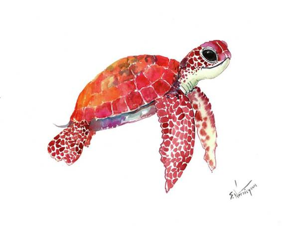 Wall Art - Painting - Baby Sea Turtle Children Room Artwork Turtle Illustration by Suren Nersisyan