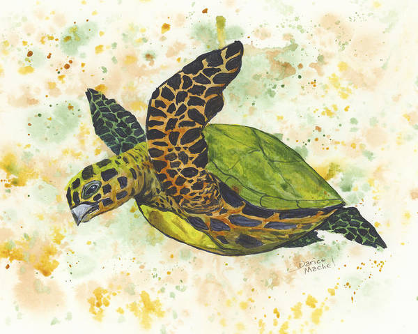 Painting - Baby Sea Turtle by Darice Machel McGuire