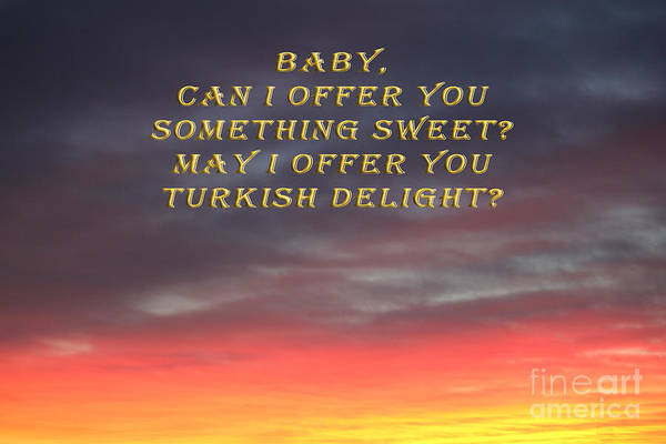 Photograph - Baby Turkish Delight by Donna L Munro