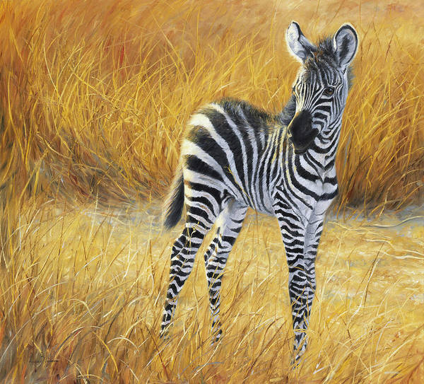 Painting - Baby Zebra by Lucie Bilodeau