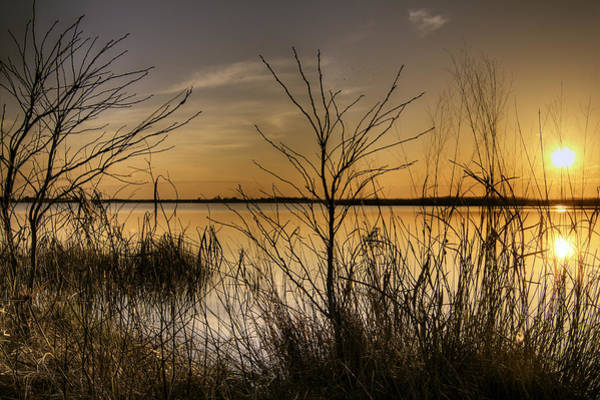 Photograph - Back Bay Sunset by Pete Federico