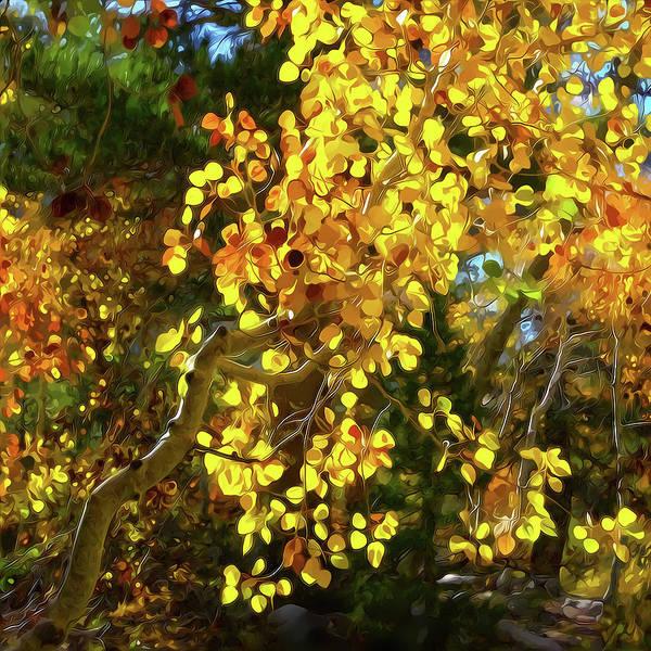 Mixed Media - Back Lit Aspen Tree A Stylized Landscape By Frank Lee Hawkins by Frank Lee Hawkins Eastern Sierra Gallery