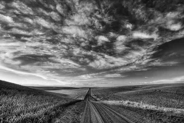 Photograph - Back Road Solitude Black And White by Mark Kiver