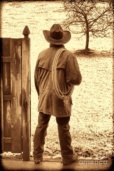 Photograph - Back To Work by American West Legend By Olivier Le Queinec