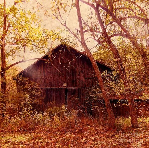 Photograph - Backroad Barn by David Neace