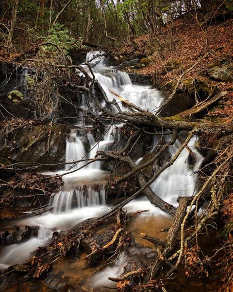 Photograph - Backroad Waterfalls by Richard Parks