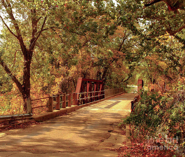 Backroad Wall Art - Photograph - Backroads River Bridge by Robert Frederick