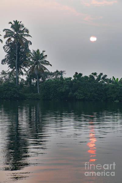 Photograph - Backwaters-kerala by PJ Boylan