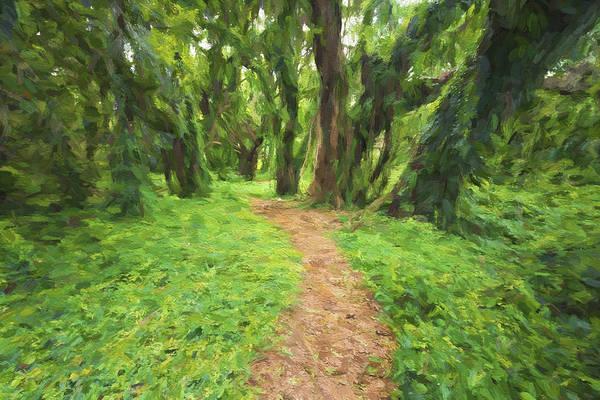 Digital Art - Backwoods Path II by Jon Glaser