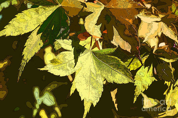 Wall Art - Photograph - Backyard Leaves by Anthony Forster