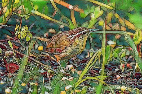 Wall Art - Painting - Backyard Wren by Deborah Benoit