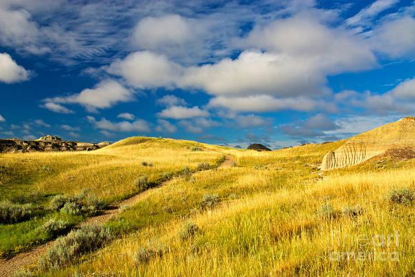Photograph - Badlands Of The  Alberta Prairie, Canada by James Steinberg