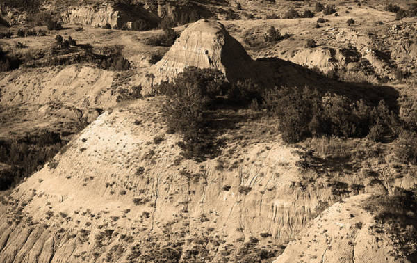Photograph - Badlands Sepia by Frank Romeo