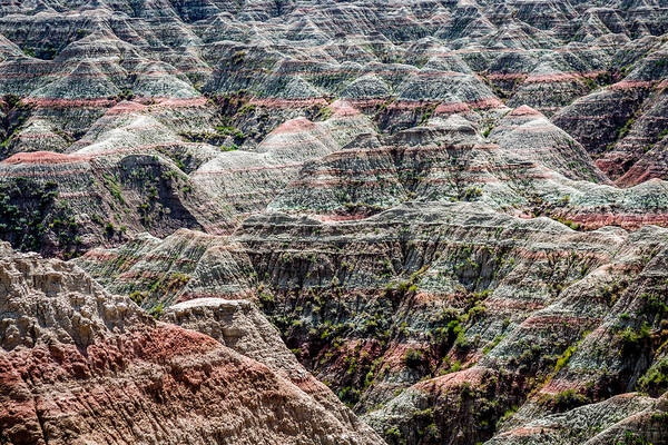 Photograph - Badlands by Susie Weaver