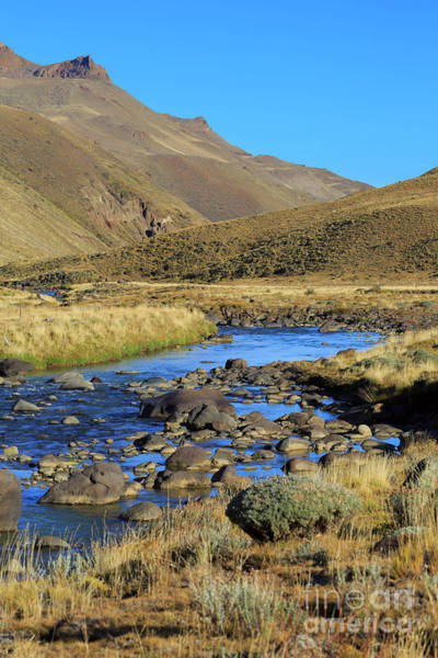Wall Art - Photograph - Baguales River In The Sierra Baguales Of Patagonia Chile by Louise Heusinkveld