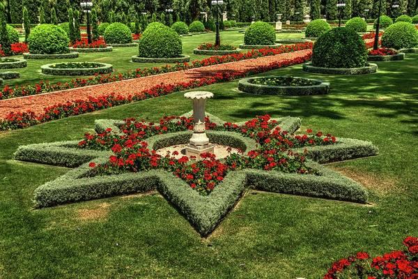 Photograph - Baha'i Gardens by Dimitry Papkov