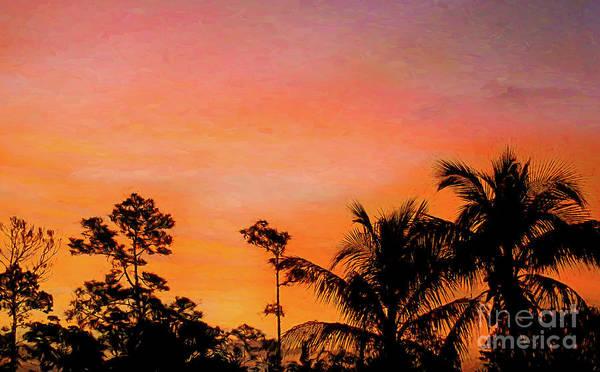Bahamas Digital Art - Bahama Sunset by Elisabeth Lucas