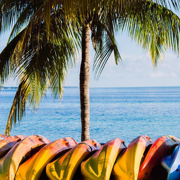 Photograph - Bahama Vibes by Parker Cunningham