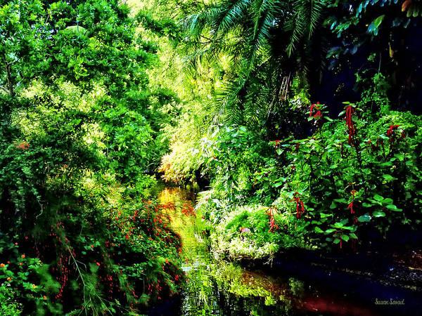 Photograph - Bahamas - Tropical Paradise by Susan Savad