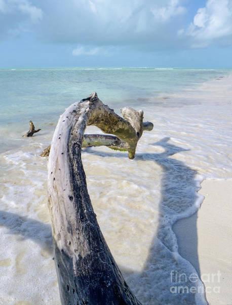 Photograph - Bahia Honda State Park, Bahia Honda Key, Florida  -80372 by John Bald