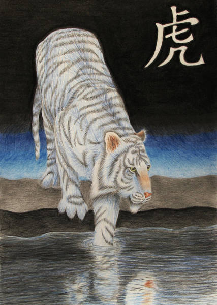 White Tiger Drawing - Bai Hu by Lauren Cawthron