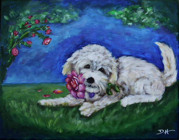Painting - Bailey by Diana Haronis