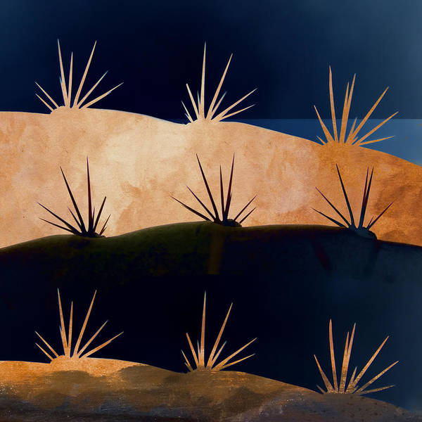 Deserts Photograph - Baja Landscape Number 1 Square by Carol Leigh
