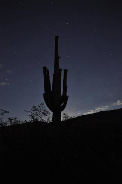 Wall Art - Photograph - Baja Moon by Everett Bowers