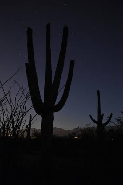Wall Art - Photograph - Baja Moon II by Everett Bowers