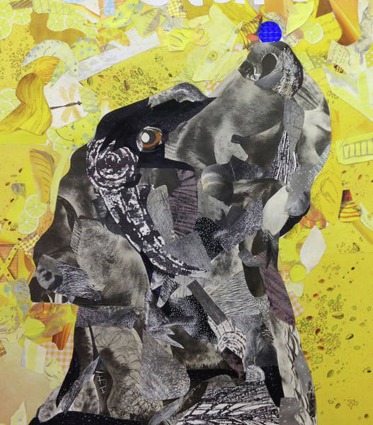 Black Lab Mixed Media - Balance by Kasey Lammers