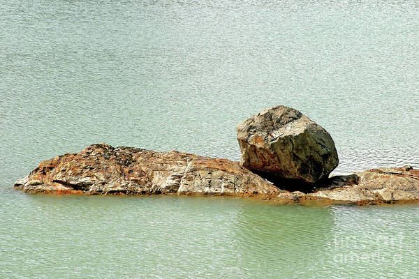 Photograph - Balanced Afloat by Rick Locke