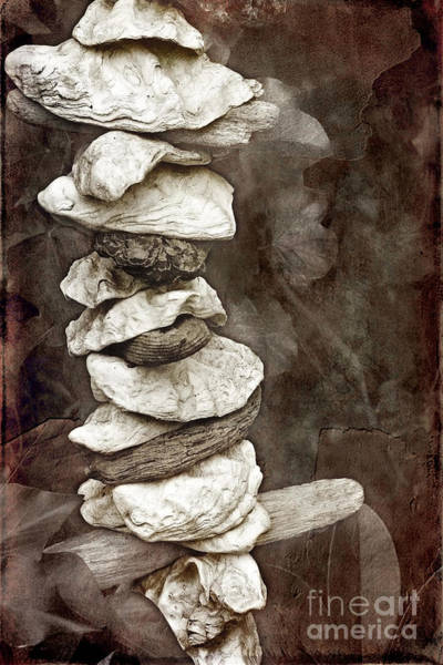 Photograph - Balanced by Ellen Cotton
