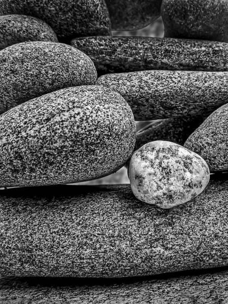 Photograph - Balanced by Robert Mitchell